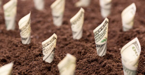 bills rolled up and planted in soil depicting money growing.