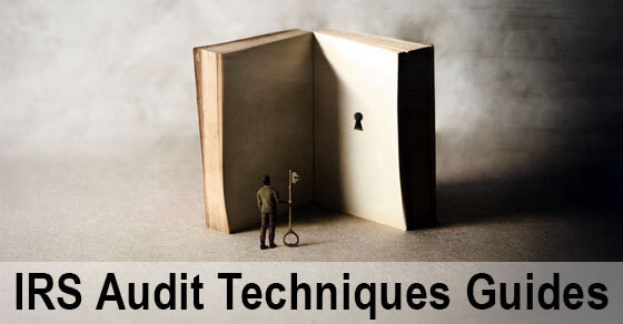 """Image of an open book with with a key hole on one of the pages. A person and a key are standing next to the open book and text is written underneath """"IRS Audit Technight Guide"""""""